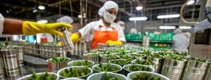 EPG-soluciones-agroindustria