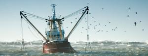 EPG-soluciones-pesca