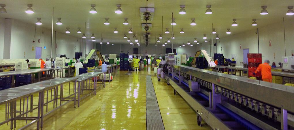 Sala de Procesos